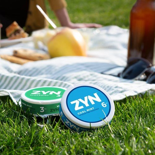 Adults having a picnic with two cans of ZYN Tobacco-Free Nicotine Pouches on the picnic blanket.